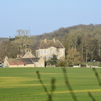 Torcy, paysages et patrimoine - Le Château, classé monument historique - visuel 2