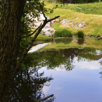 Torcy, paysages et patrimoine - La Bourbince - visuel 2