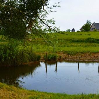 Torcy, paysages et patrimoine - La Bourbince - visuel 3