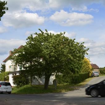 Torcy, paysages et patrimoine - Petit Boulay - visuel 1