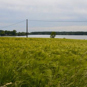Torcy, paysages et patrimoine - Petit Boulay - visuel 3