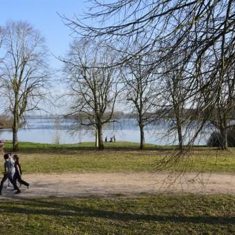 Torcy, paysages et patrimoine - Le Lac de Torcy - visuel 3