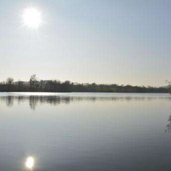 Torcy, paysages et patrimoine - Le Lac de Torcy - visuel 1