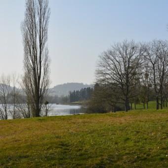 Torcy, paysages et patrimoine - Le Lac de Torcy - visuel 2