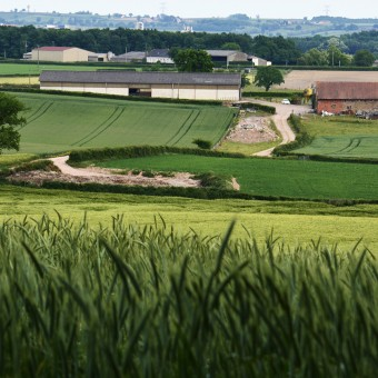 Torcy, paysages et patrimoine - Le Bois Autot