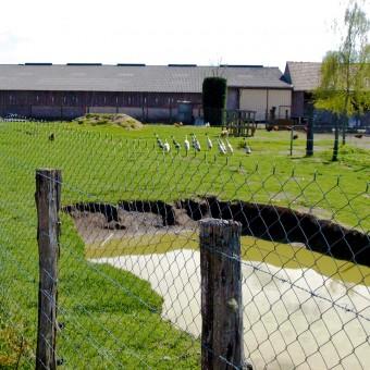Torcy, paysages et patrimoine - Les Morlins d'en haut et d'en bas - visuel 3