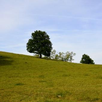Torcy, paysages et patrimoine - Les Perraudins / La Barre - visuel 1