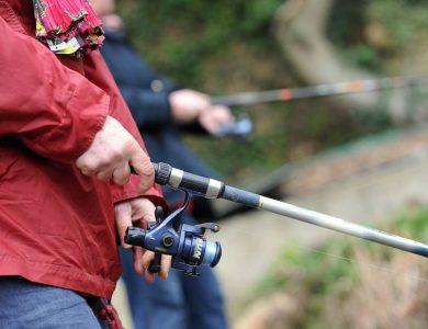 Mairie de Torcy - Lac de Torcy/ Etang Leduc – pêche autorisée